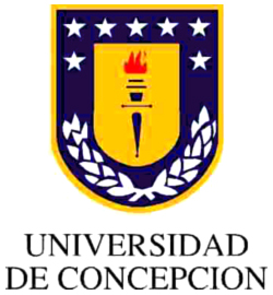 Universidad De Concepcion